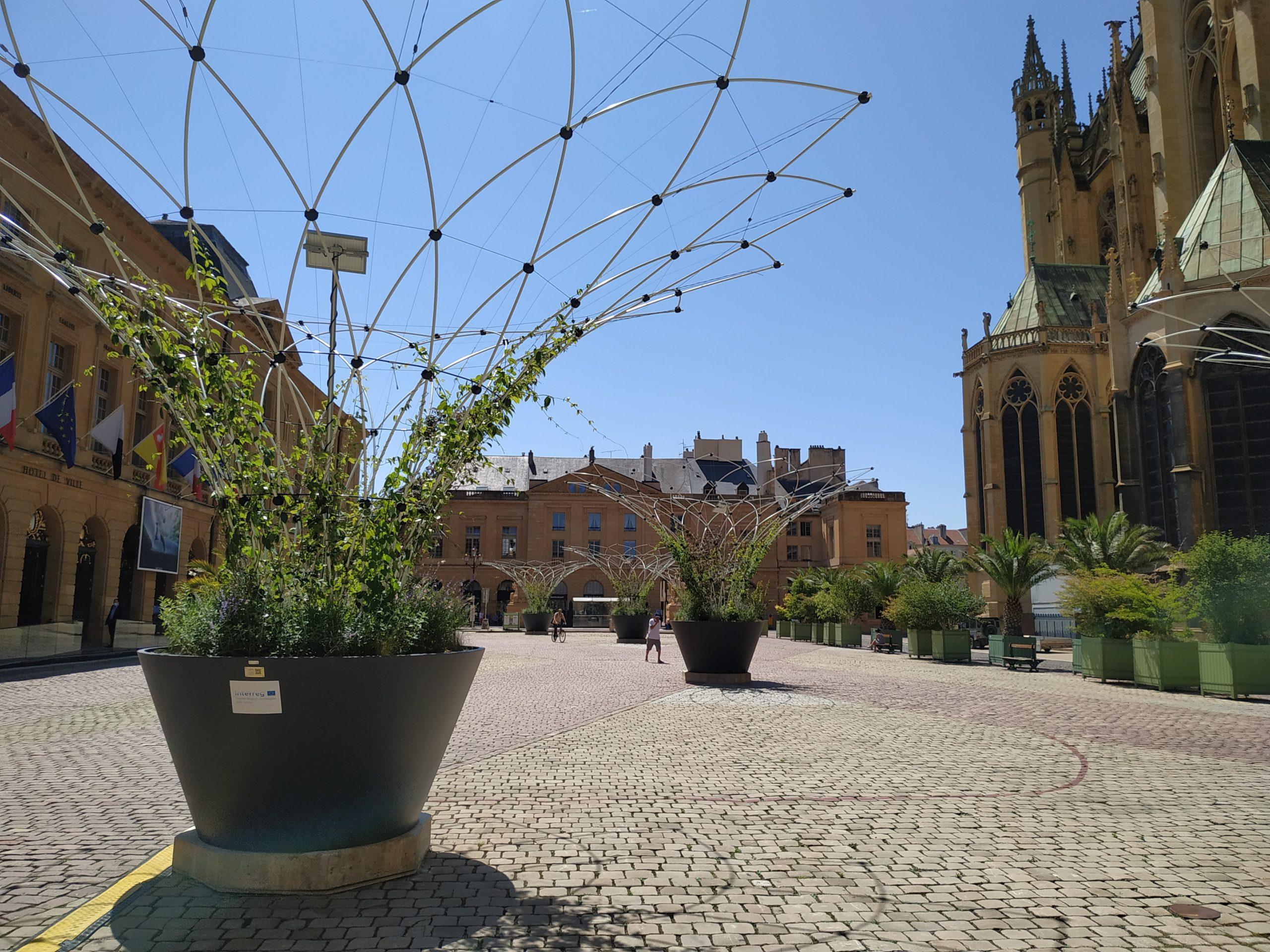 Urbane Blätterdächer kühlen die Place d'Armes in Metz