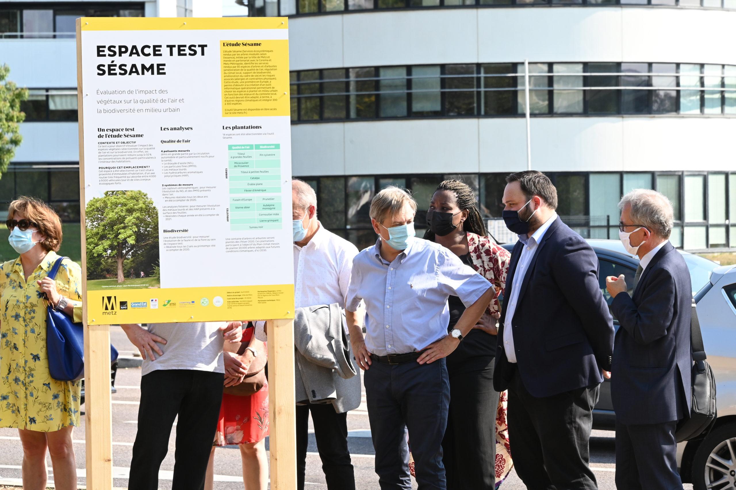 L'étude SESAME à Metz : quels arbres planter aujourd'hui pour les villes de demain ?