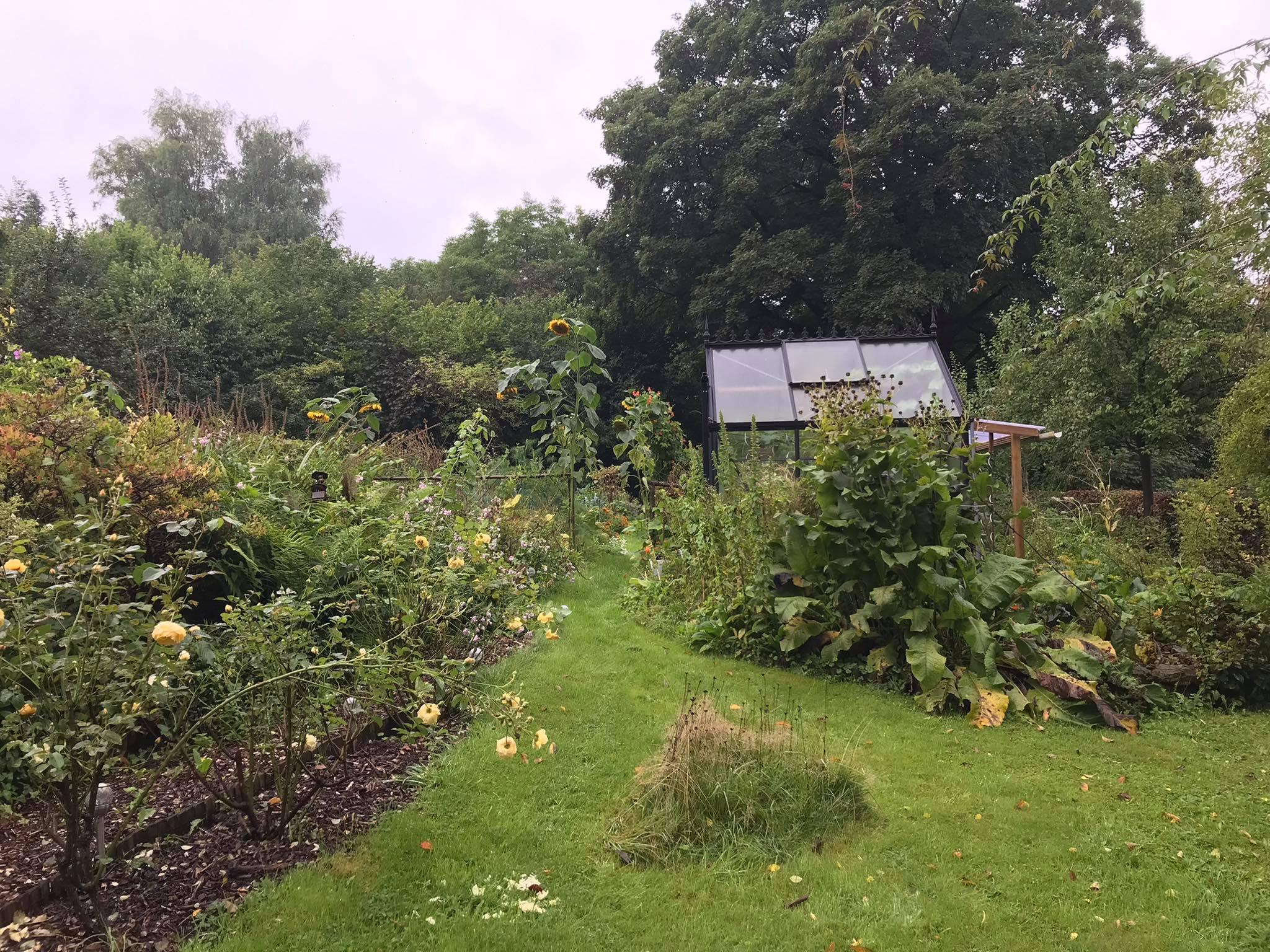 Première édition du concours « Jardiner pour la biodiversité » à Verviers : le jardin de Daniel Wilket primé pour ses qualités biologiques